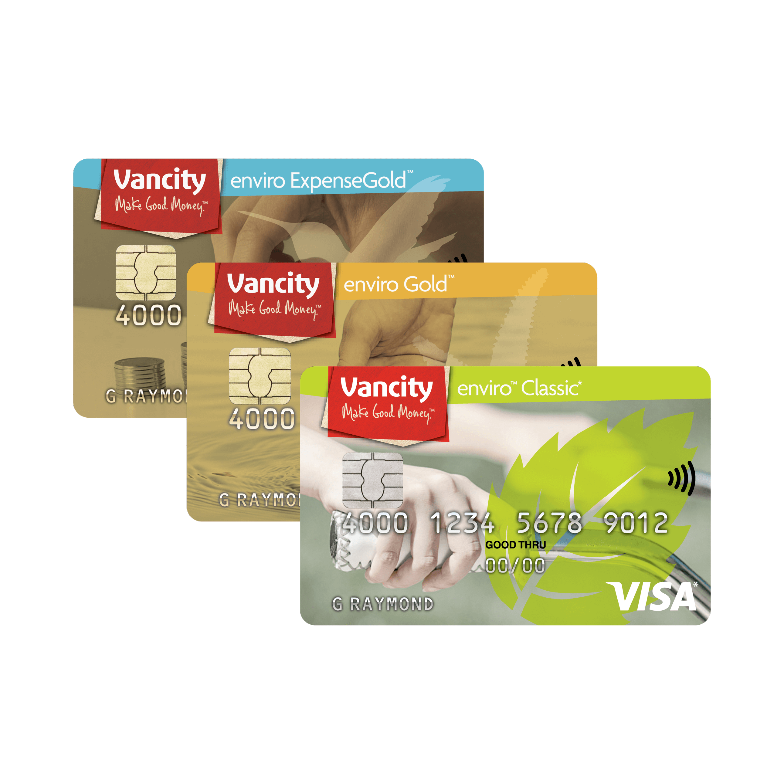 How do I access my Visa card information through the Manage my Visa
